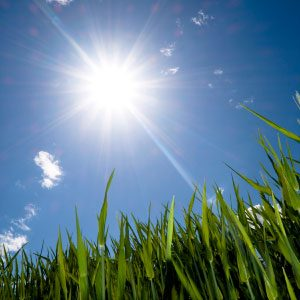 4. Get In the Sun Without Sunblock (or Take Vitamin Supplements Instead)