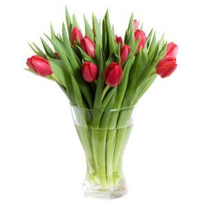 Use Bleach to Keep Cut Flowers Fresh