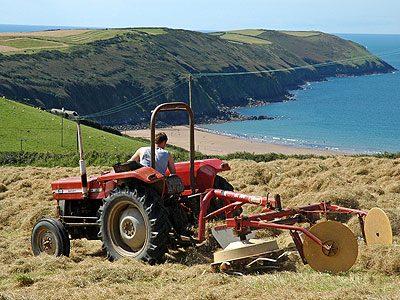 4. Devon Farms, Southwest England