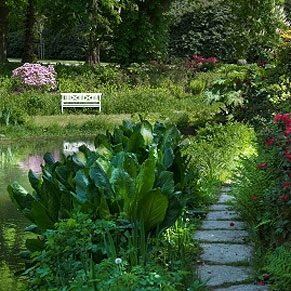 4 Ways of Looking at a Garden