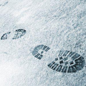 5. Snow Tells Me A Lot