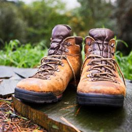 2. Dry Wet Shoes