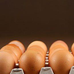 Freeze Extra Eggs