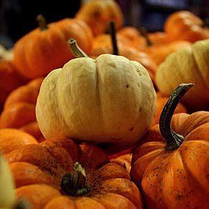 6. Hang an Autumn Garland