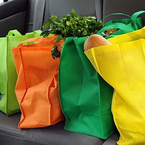 5. Make an Insulated Bag
