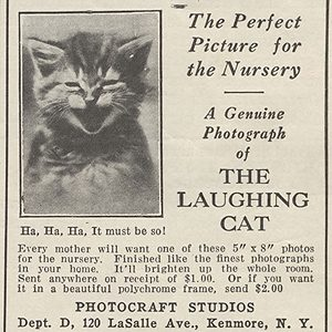 The Laughing Cat Strikes Gold