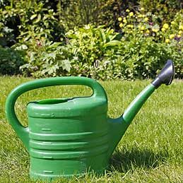 Watering Can or Watering Wand