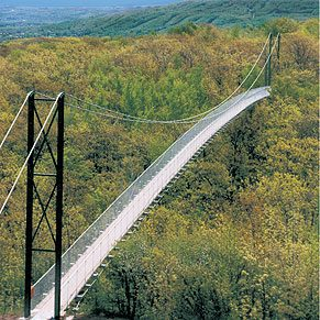 8. Suspension Bridges