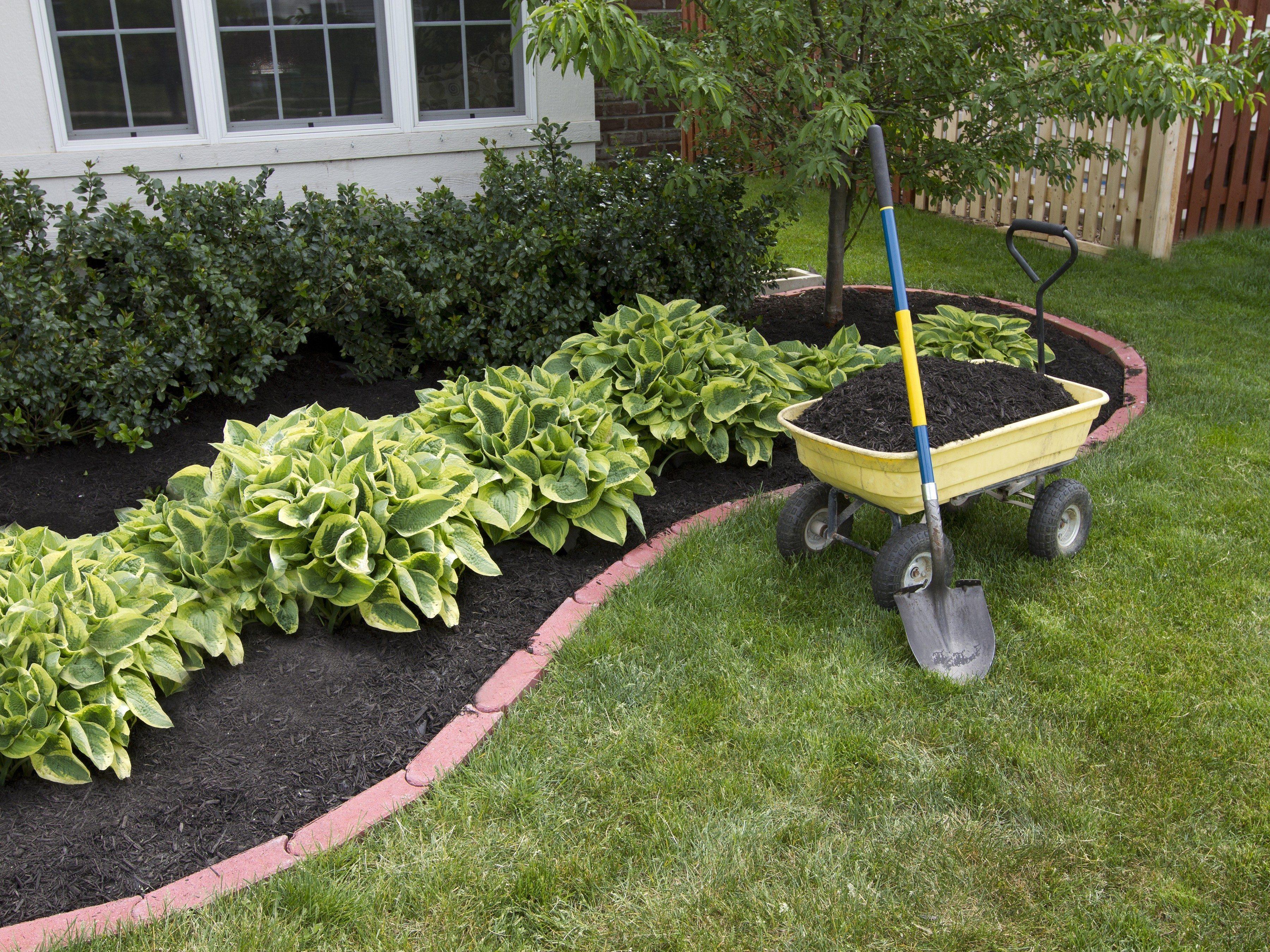 9. Ajoutez du paillis frais à votre jardin