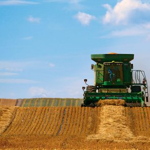 Harvest in Canada - combine in wheat field