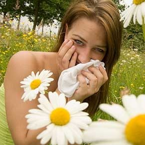 Get the Allergies in the Air Out of Your Hair