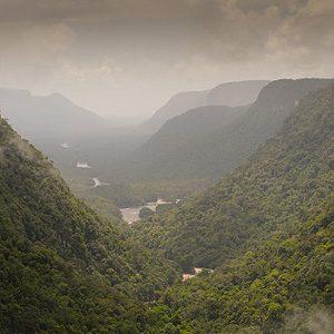5.  The Amazon