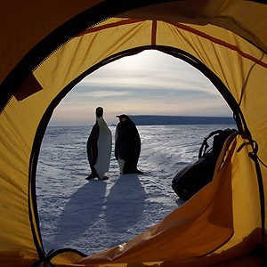 1. Camp on Antarctica
