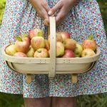 7 Health Benefits of Apples