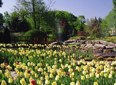 Beechwood Cemetery - Ottawa, Ontario
