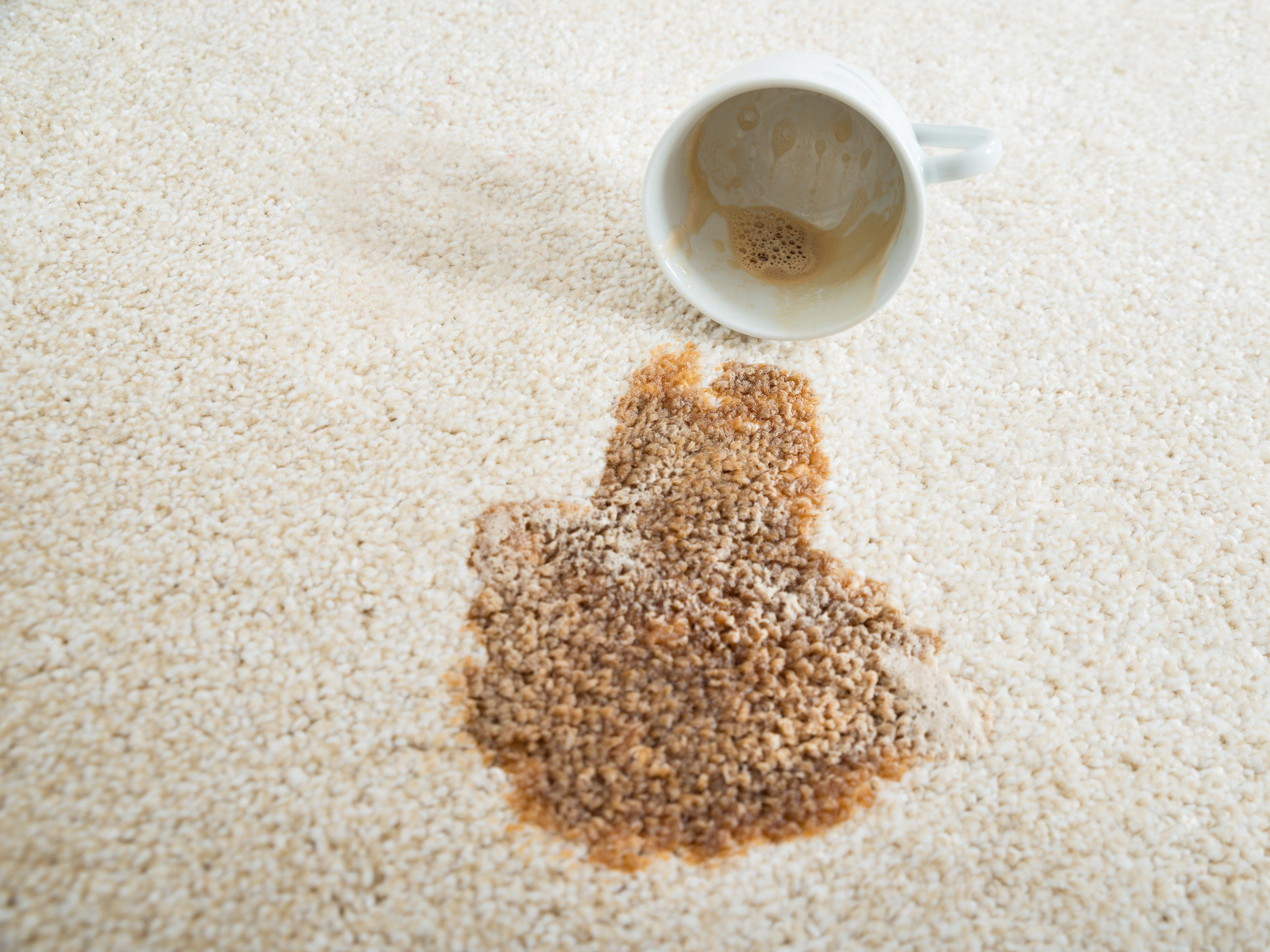3. Use Beer to Remove Tea and Coffee Rug Stains