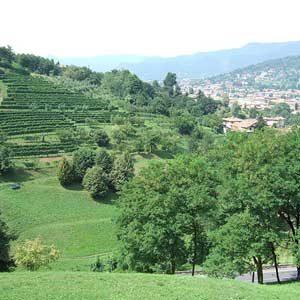 7. Bergamo