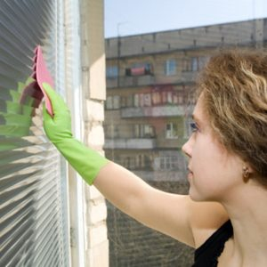 3. Rid Mom's Blinds Of Dust Bunnies