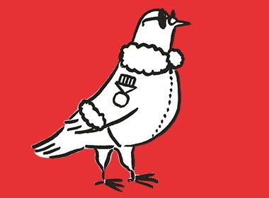 Ornithological Commendation in Canada: The War Pigeon