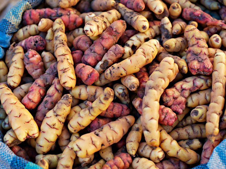 Ways to Celebrate Canada: Canadian Potato Museum