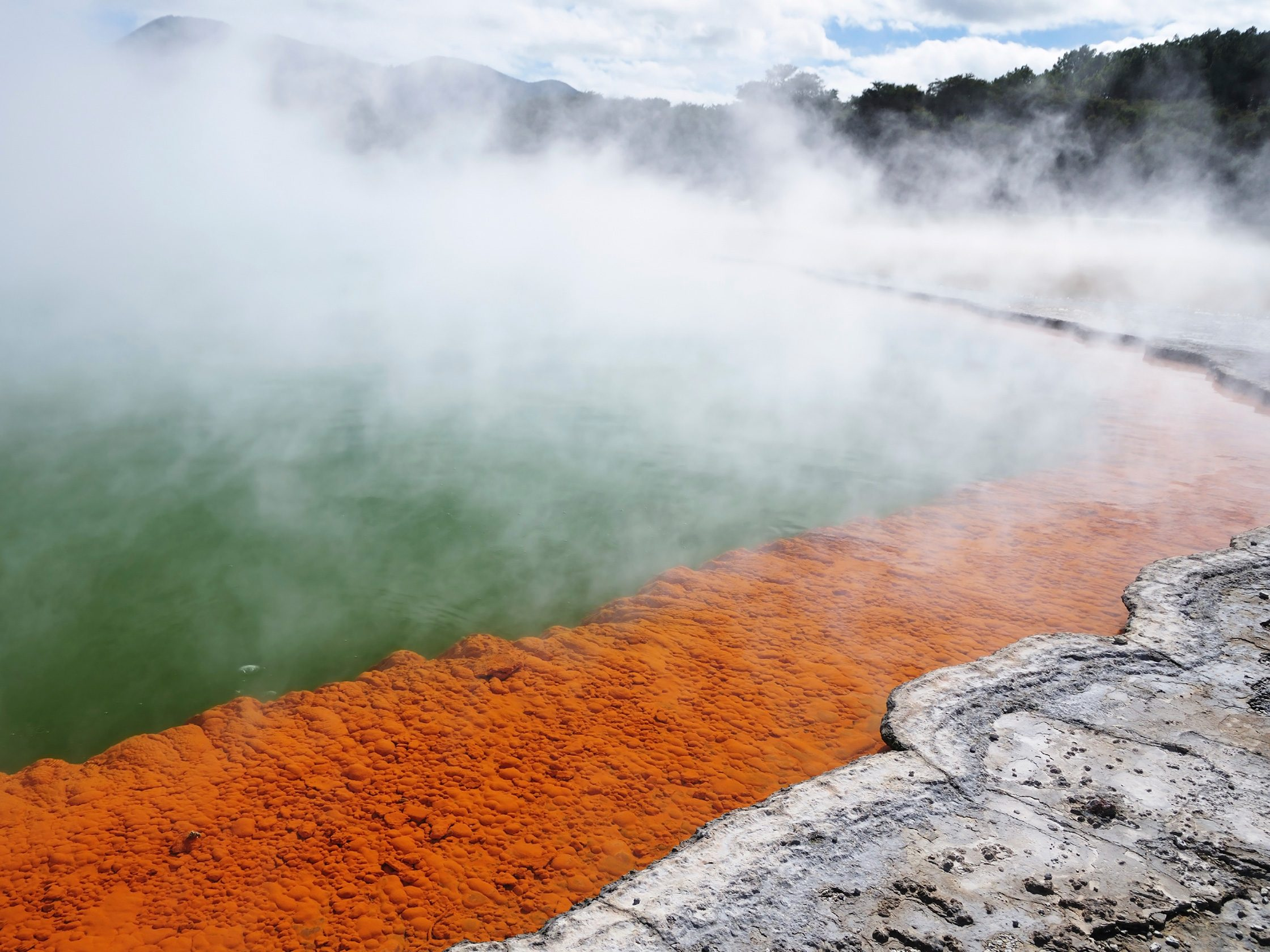 Discover the Champagne Pool in New Zealand