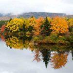 8 Essential Cape Breton Experiences