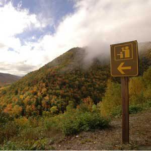 5. Hike the Skyline Trail