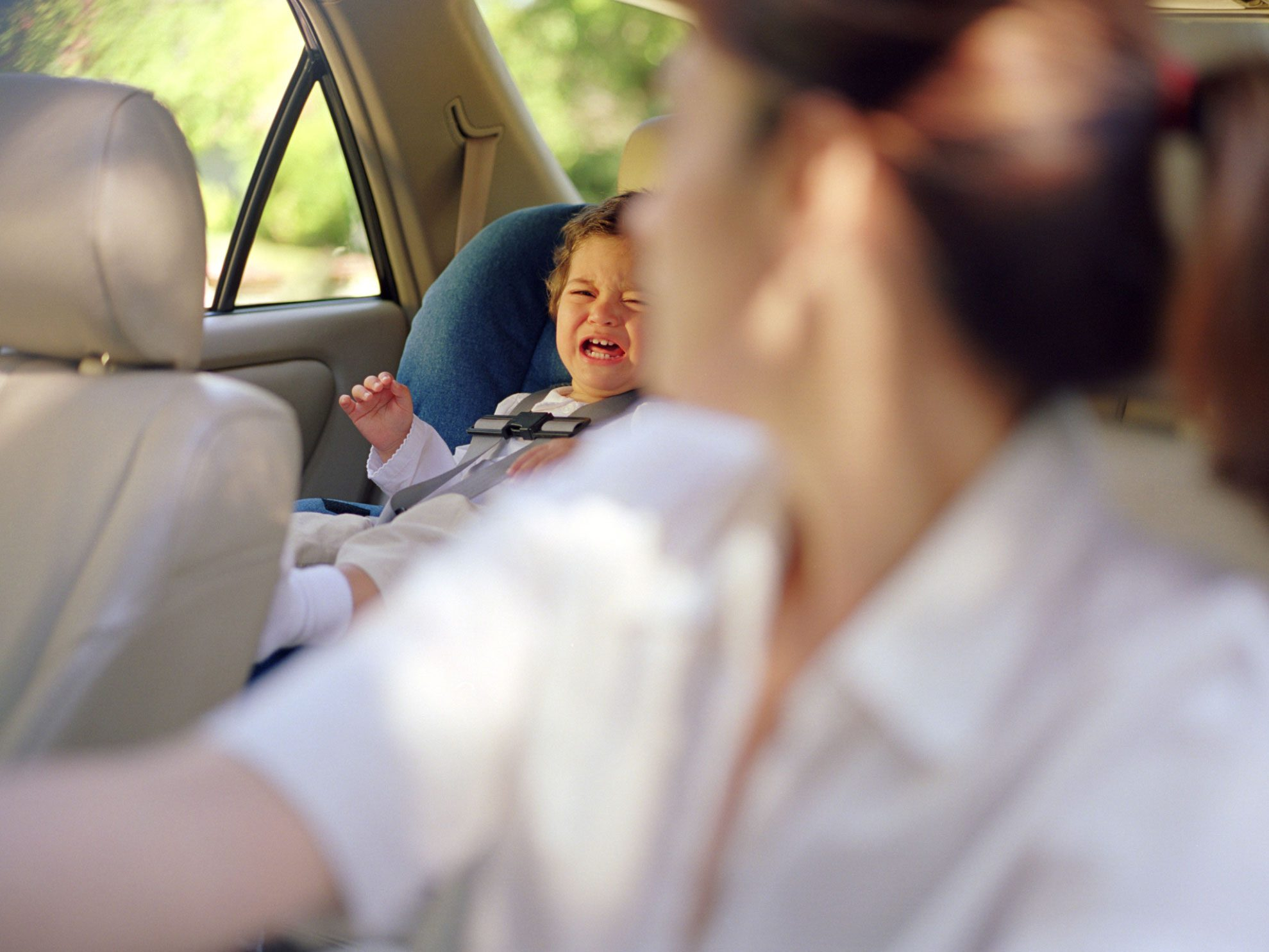 Reduce Distractions and Focus on the Road