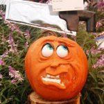 Halloween: Disguise a Pumpkin Project