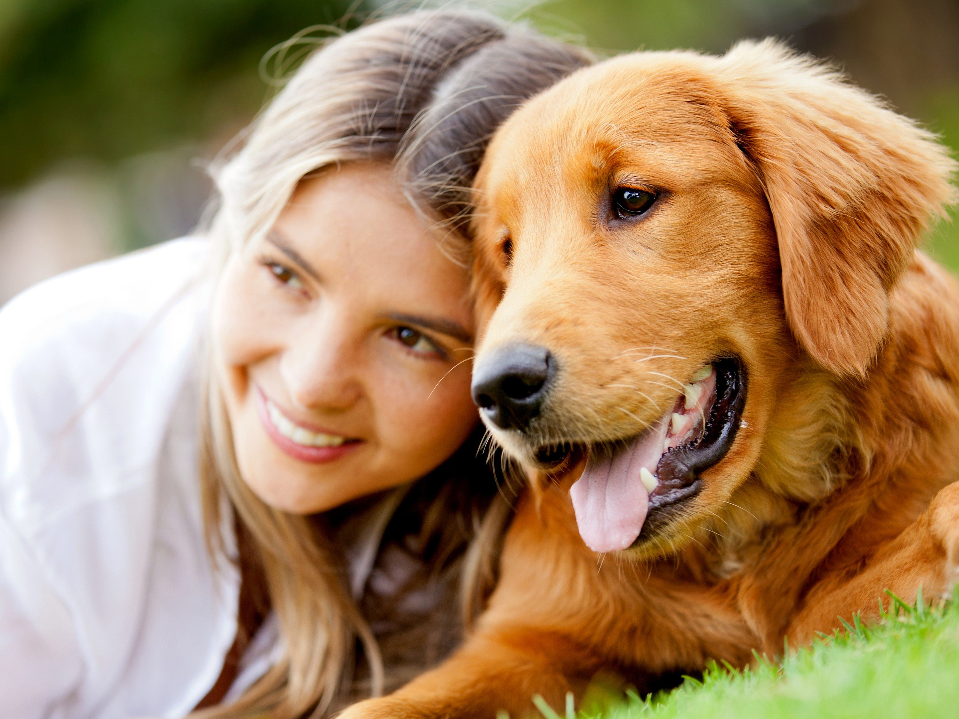 Vaccinations for Dogs