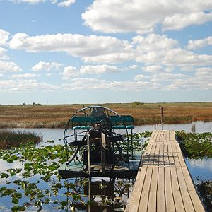 6.  The Florida Everglades