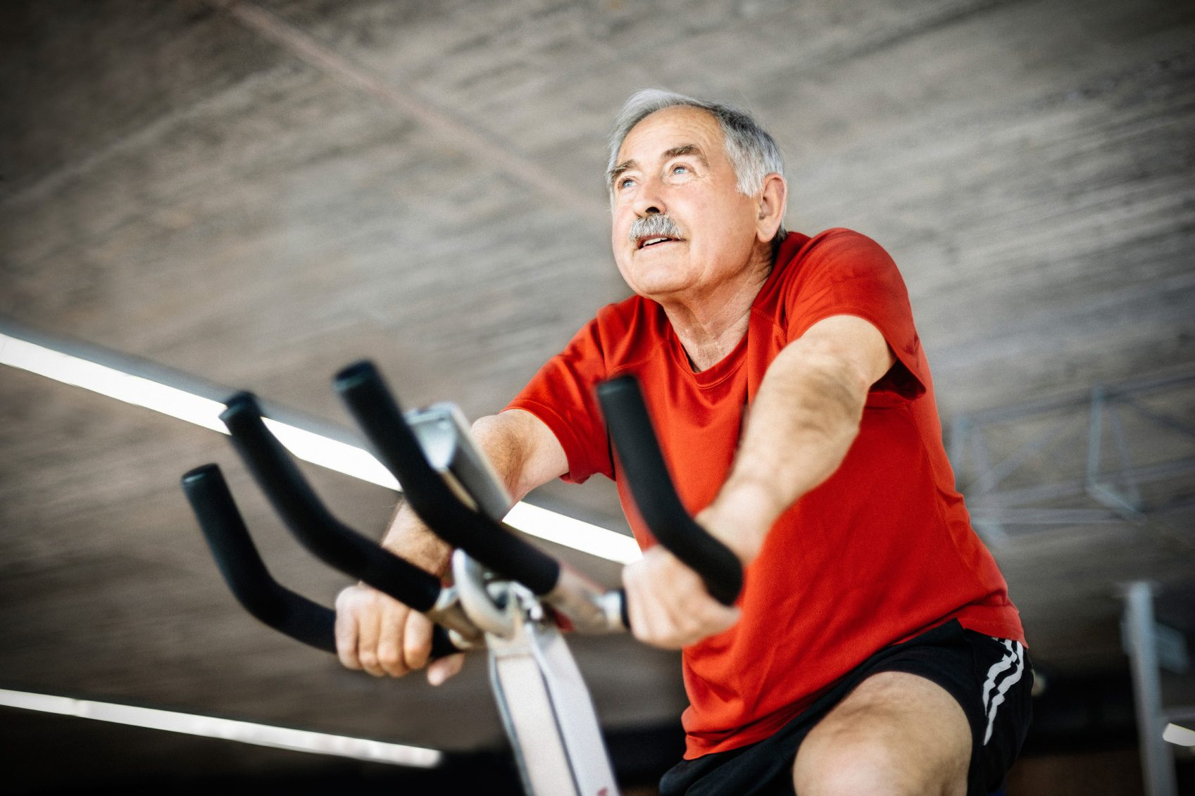 Stroke Recovery Discoveries