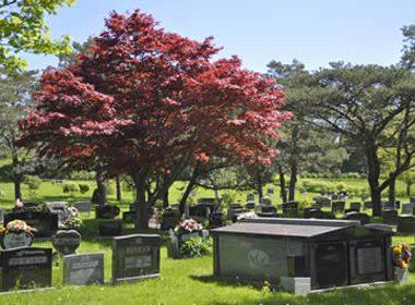 Fairview Cemetery - Halifax, Nova Scotia
