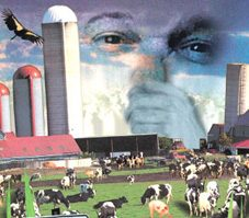 Should We Fear the Factory Farm?