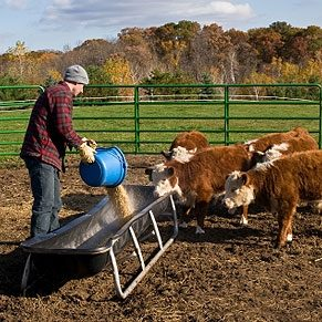 7 Working Farm Holiday Options