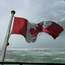flagwaving