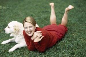 6. Millionaire Pets: Flossie (Labrador), $3 million