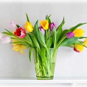 1. Help Cut Flowers Last Longer