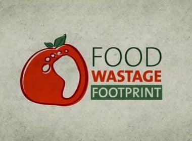 Food Wastage Footprint