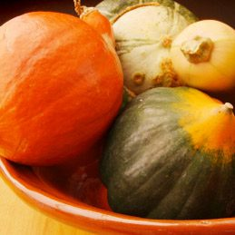 Pumpkin and hard squashes