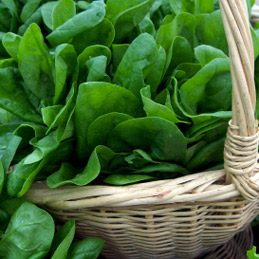Spinach and greens