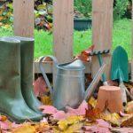 8  Autumn Chores for the Lazy Gardener