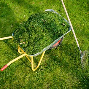 2. Recycle Your Grass