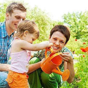 Green Trends in Gardening