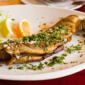 Grilled Spiced Trout Fillets
