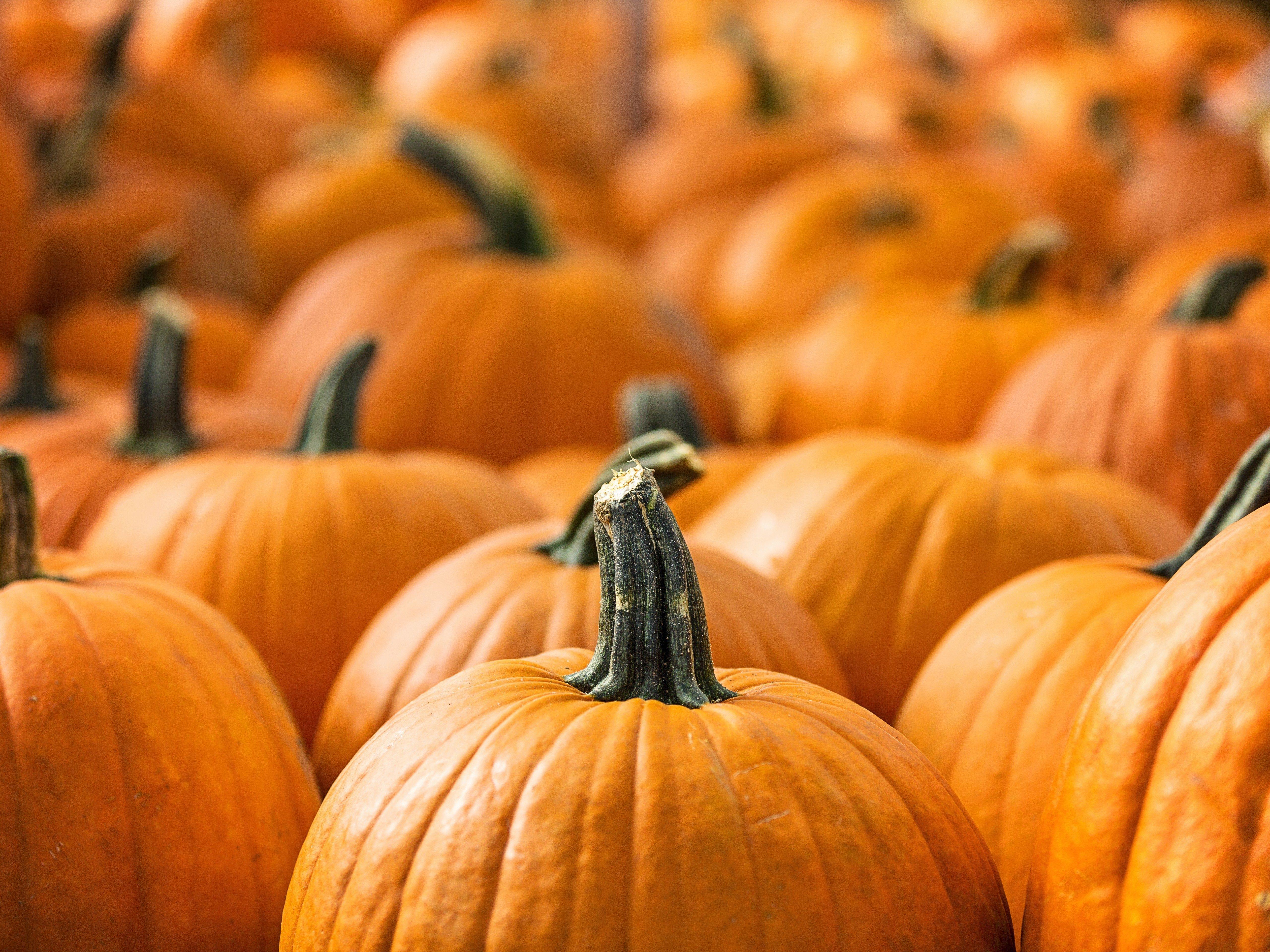 healthy-pumpkins_0