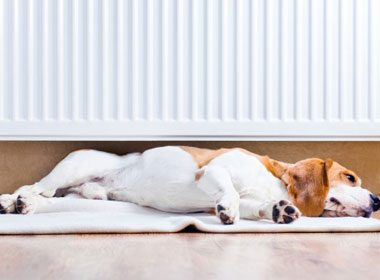 Preparing Your Home for Fall: Check the Heating System