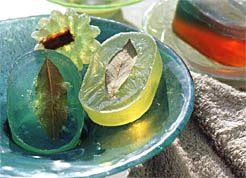 Transparent Herb Soaps