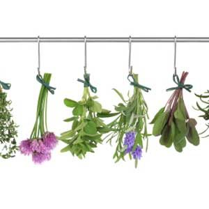 Key Ingredients: Herbs