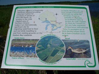 Hilliardton Marsh information